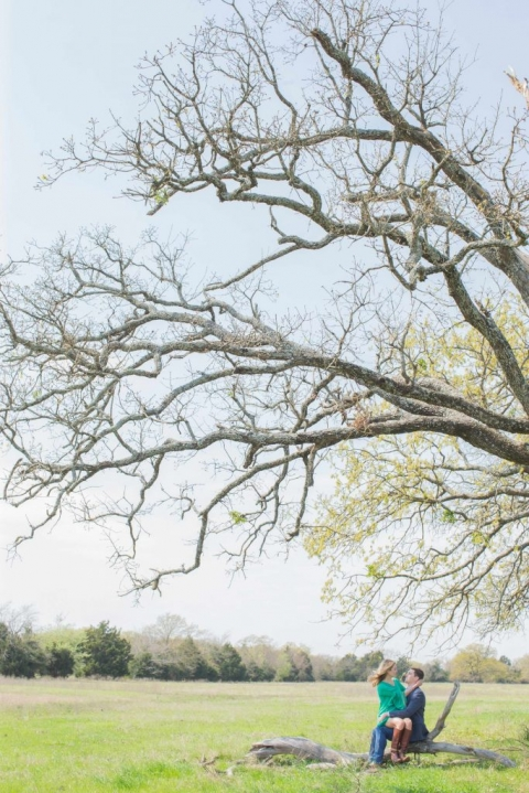 Couple sitting under large tree for outdoor engagement photos - Photos by Kiss Me For Eternity